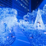 What to do in Winter when you are in Tokyo??
